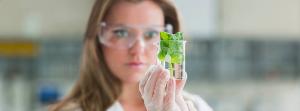 Image Capfinity sur Facebook histoire du laboratoire image