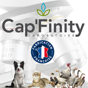 Image Capfinity Engagement production Francaise